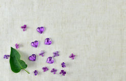 Violet heart, lilac flowers and leaves on fabric background. stock photo