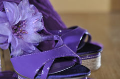 Violet heels with flower. On wooden floor royalty free stock photography
