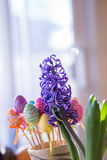 Violet Hyacinth Flower et oeufs en plastique scintillants colorés de Pâques Images stock