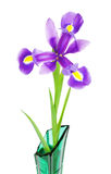 Violet Iris Flower Royalty Free Stock Photo