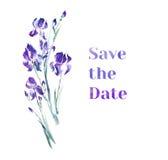 Violet iris flowers bouquet. Watercolor illustration Stock Images