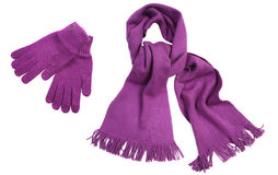 Violet knit scarf and gloves. Isolated on white Stock Image