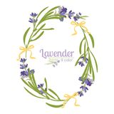 Violet Lavender beautiful floral frames template in watercolor style isolated on white background for decorative design, wedding c Royalty Free Stock Photo