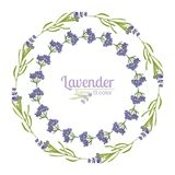 Violet Lavender beautiful floral frames template in watercolor style isolated on white background for decorative design, wedding c Royalty Free Stock Image