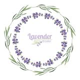 Violet Lavender beautiful floral frames template in watercolor style isolated on white background for decorative design, wedding c Stock Photo