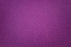 Violet leather texture or background Stock Image