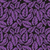 Violet leaves. Seamless vector pattern. For design Stock Photo