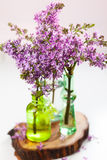 Violet lilac Stock Photo