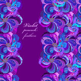 Violet, lilac and blue peacock feathers. Vertical border dark design. Stock Photo