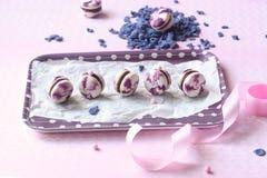 Violet Macarons avec la myrtille Fillinge Yule Log de chocolat image libre de droits