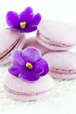 Violet macaroon Stock Photography