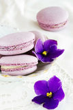 Violet macaroon. With violet flowers Stock Photography