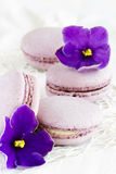 Violet macaroon. With violet flowers Stock Images