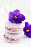 Violet macaroon. With violet flowers Royalty Free Stock Image
