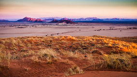 Violet. Namib Naukluft landscape at sunset from Elim dune, sesriem, Namibia Stock Photos