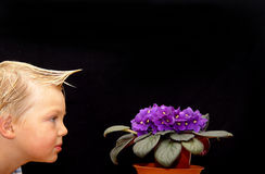 Violet observation. Child observing a violer royalty free stock photography