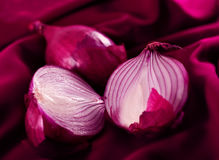 Violet onion Stock Photo