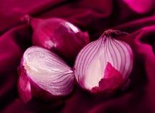 Violet onion Stock Photo