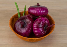 Violet onion Stock Images