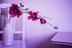 Violet orchid flowers in white vase in a retro home. On a wooden chair Stock Photo