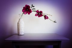 Violet orchid flowers in white vase. On wood table beautiful modern interior stock image