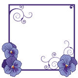 Violet pansies. Vector frame with flowers of  violet pansies  (EPS 10 Royalty Free Stock Image