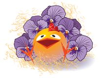 Violet pansies and chicken Royalty Free Stock Photos