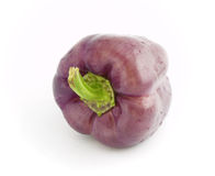 Violet pepper bell Stock Photo