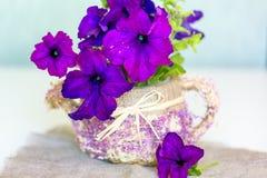 Violet Petunia flowers in a wattled basket Stock Image