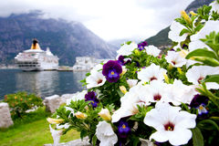 Violet and petunias. On a background of mountains and ship Stock Photo