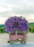 Violet plant. Surrounded by blurred background. It is a vertical image Stock Image