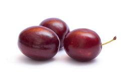 Violet plums Royalty Free Stock Images