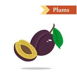 The violet plums. Illustration with juicy and tasty fruits - plums Royalty Free Stock Image