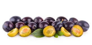Violet plums Stock Images