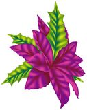 Violet Poinsettia Royalty Free Stock Images
