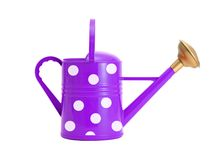 Violet polka dot watering can isolated on white Royalty Free Stock Photos