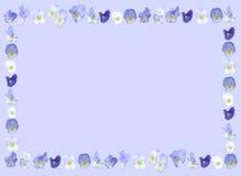 Violet purple flower background. Frame isolated on soft violet blue Stock Photography