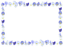 Violet purple flower background. Frame isolated on white Stock Photography