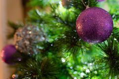 Violet Purple and Silver Christmas balls on tree in a winter scene royalty free stock photography