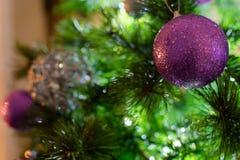 Violet Purple und silberne Weihnachtsbälle auf Baum in einem Winter sce lizenzfreie stockfotografie