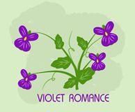 Violet romance Royalty Free Stock Photography