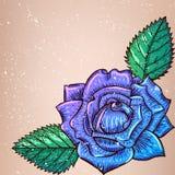 Violet Rose mit Blättern Stockfotos