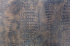 Violet spotted crocodile leather background Royalty Free Stock Photos