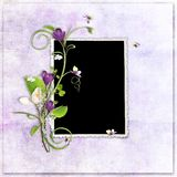 Violet spring frame with crocuses Royalty Free Stock Photos