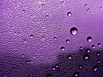 Violet stained glass. Drops of dew on the violet stained glass Stock Photography