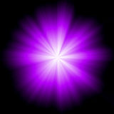 Violet Star Burst Stock Photography