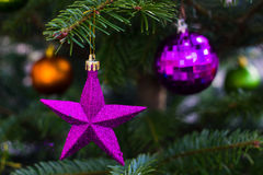 Violet star on Christmas tree. Royalty Free Stock Image