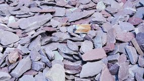 Violet stones background Stock Photography
