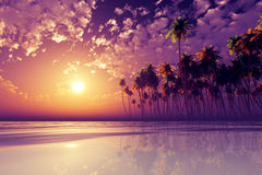 Violet sunset over tropic sea Stock Images
