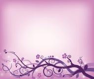 Violet swirls vector illustration